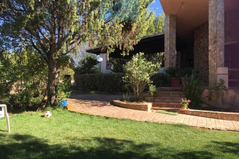 prospect and garden